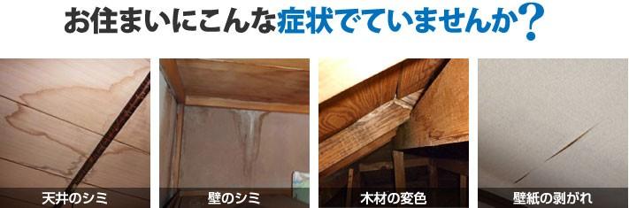 雨漏りの様々な症状
