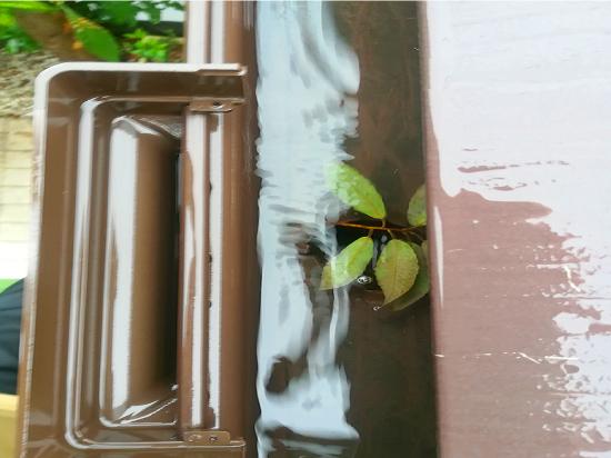 竪樋が植物によって詰まっています