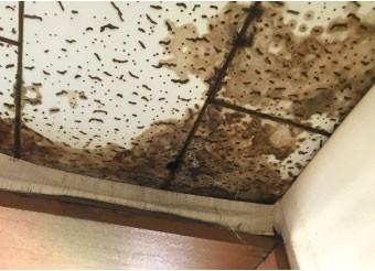 防水層の劣化が原因で発生した雨漏り