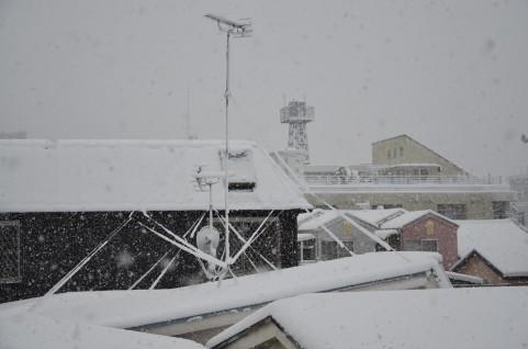 雪が屋根に積もってしまった住居の数々