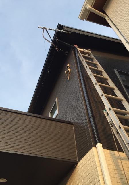 家に掛けられた梯子