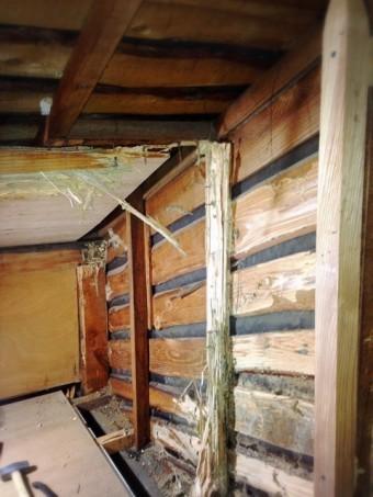 湿気の多い天井裏