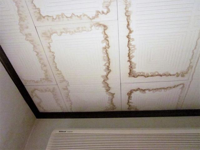 天井に出来た雨漏りによるシミ