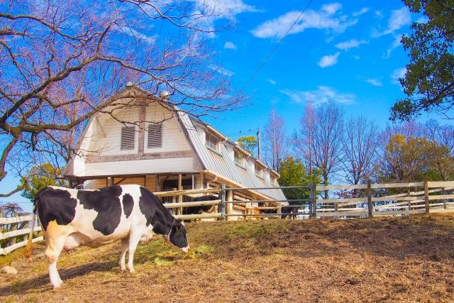 ギャンブレル屋根が使われた牛舎