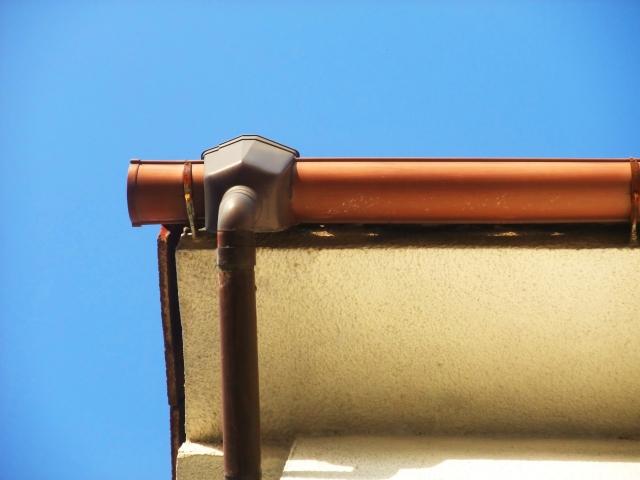 下から見た半円型の雨樋