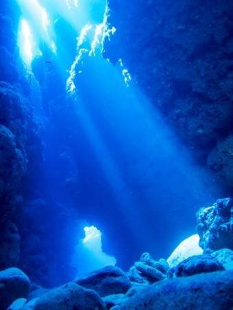 青く澄み渡った海の底