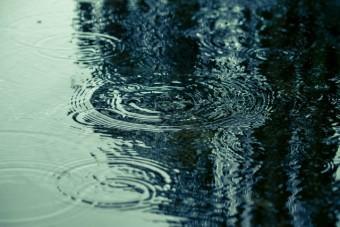 水面に映る波紋