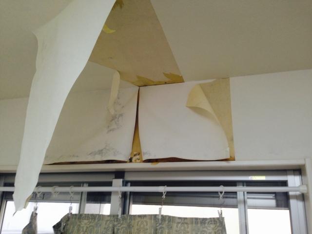 雨漏りにより室内のクロスが剥がれてしまっている状態