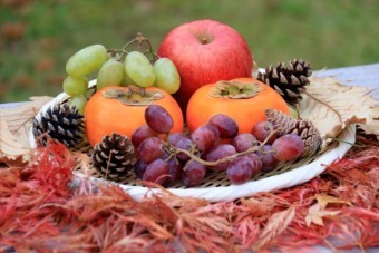 秋に収穫できる食べ物
