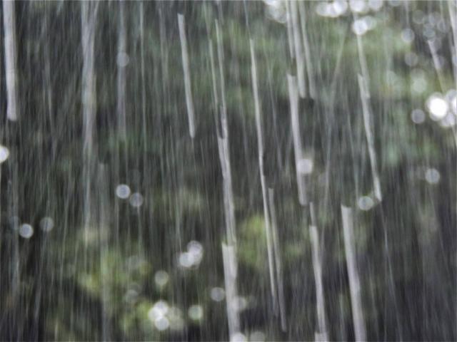 降りしきる大雨