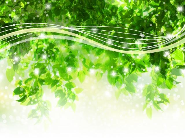 木の間を通り抜ける爽やかな風