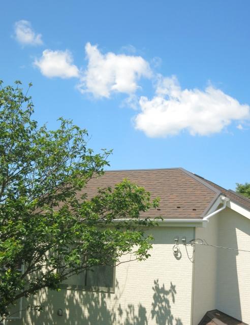 木の向こうに見える家