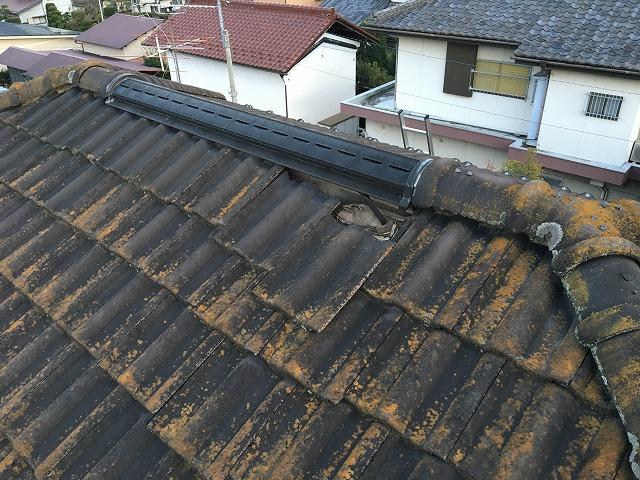 苔が生え、瓦1枚がずれてしまった瓦屋根