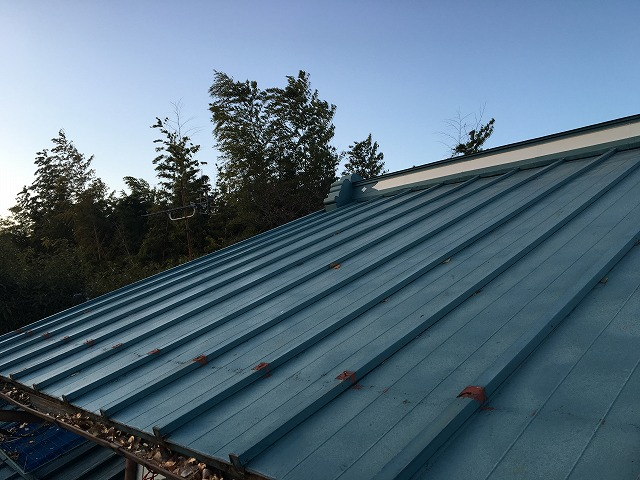緑色の金属屋根