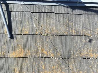 ヒビが発生した黒色のコロニアル屋根