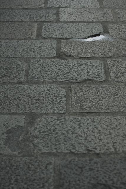 家の敷地内にある石畳