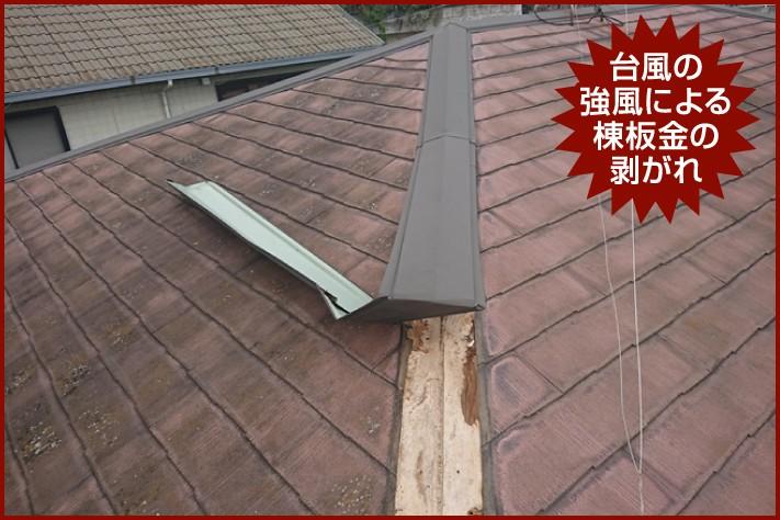 台風の強風による棟板金の剥がれ